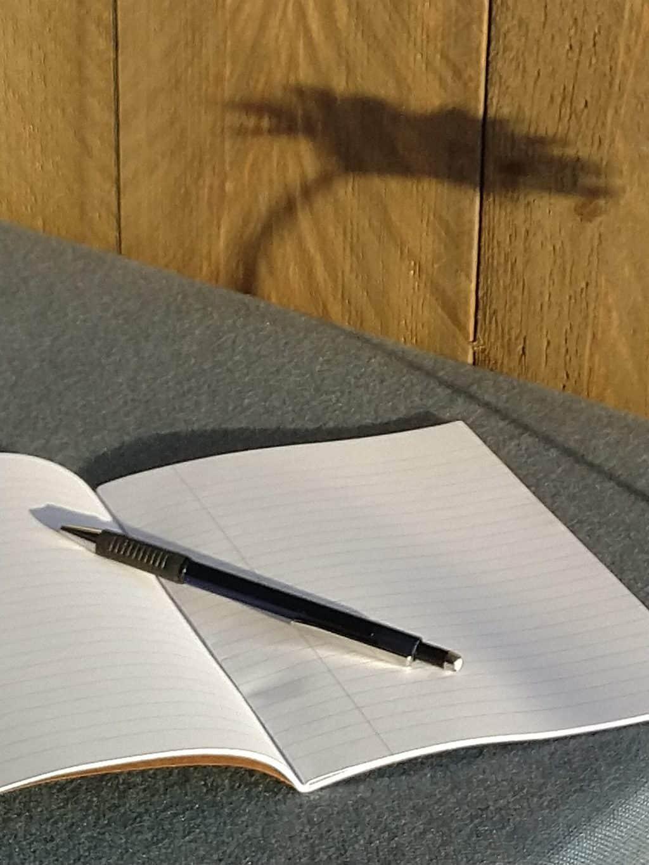 Schöne Schreiborte: Kreatives Schreiben auf dem Gartensofa