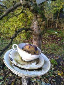 Der Garten im Nordkolleg Rendsburg - ein großartiger Ort für Schreibinspirationen; hier ein verrotteter Apfel in einem Geschirr-Kunstwerk