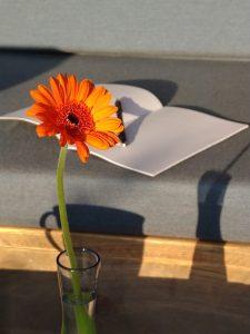 Blume-Sofa-Kaffeebecher-Notizbuch-Maike-Frie-skriving-Kreatives-Schreiben-Maike-Frie
